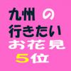 福岡は秋月の桜がおすすめ!ランチ・蕎麦や駐車場を公開!