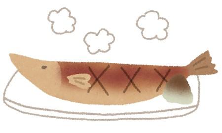 魚焼きグリルプレートのオススメや簡単な使い方を紹介!
