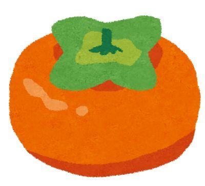 柿の保存方法はコレ!常温・冷蔵庫?大量にもらった時のレシピも公開!